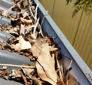 Perth Gutter and Downpipe Cleaning preview